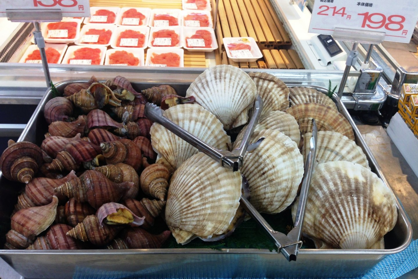 Fresh sea creatures big and small at the Co-op markets