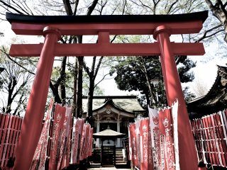 Torii like this are usually found at shrines