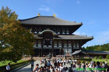 นารา (Nara) #2 Todaiji Temple