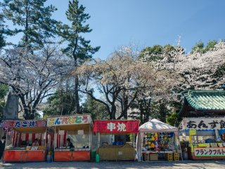 Even at Zojoji you can expect to see food and other booths to enjoy refreshments while also enjoying the sight of the blossoms above.
