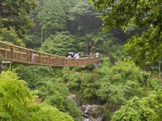 Esta ponte proporciona uma bela vista do alto da cachoeira e rio