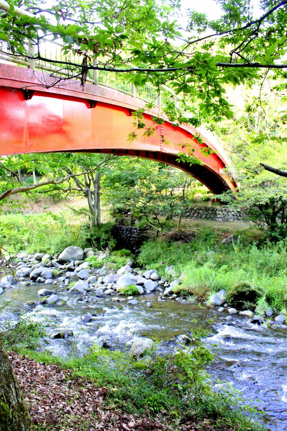 The red bridge over the shallow rushing waters gives a perfect contrast to the green surroundings