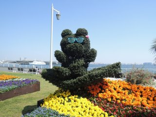 Bear on holiday