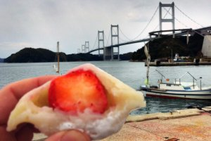 Ichigo daifuku and a suspension bridge