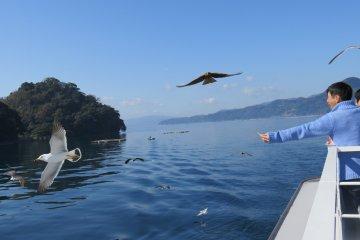 Viajando de barco pela Baía de Ine