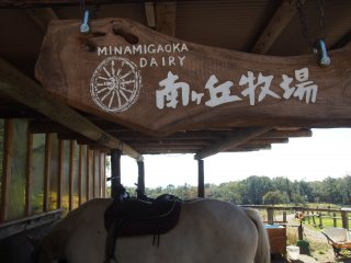 Minamigaoka Dairy: Action packed ranch with everything from animal rides, trout fishing, a petting zoo and local produce