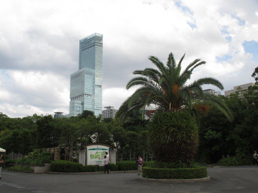 Tennoji Zoo lies in the metropolis of Osaka city