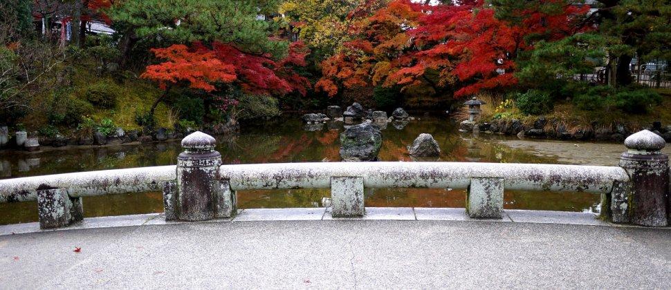 Autumn at Maruyama Park