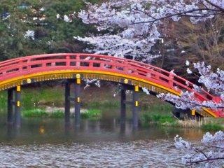 Yokohama's Shomyo-ji Temple