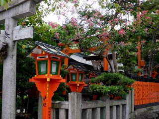 Red lanterns and pink flowers at Tatsumi Daimyojin Shrine