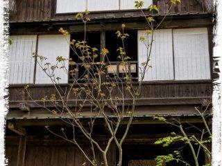บ้าน Yamada จากจังหวัดโทะยะมะ (ต้นศตวรรษที่ 18)