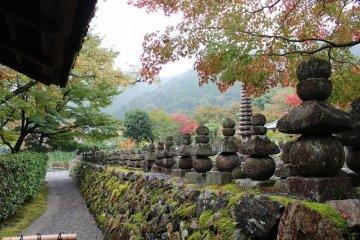 京都「化野念仏寺」を巡り歩く~1
