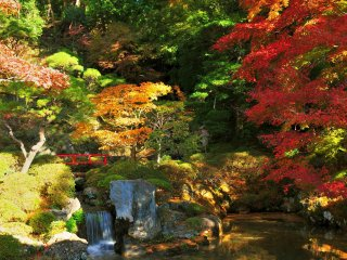The Japanese garden of Shuzenji Temple, which was specially open to the public during autumn season. This garden is reputed to be the best Japanese garden in the Tokai region.
