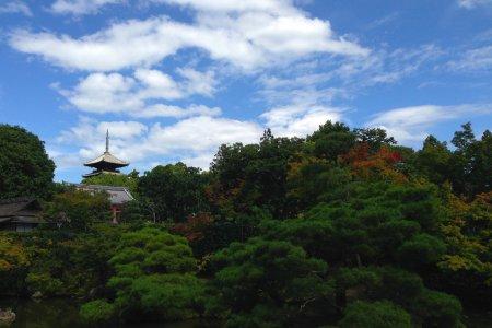 A Beleza Antiga do Templo Ninna-ji