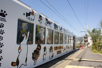 Tama Line (The Kishigawa Line)