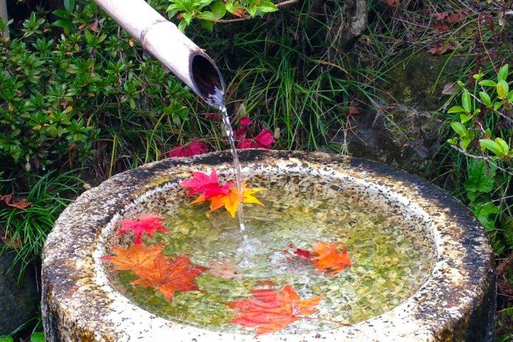 Осень в мемориальном парке Сёва