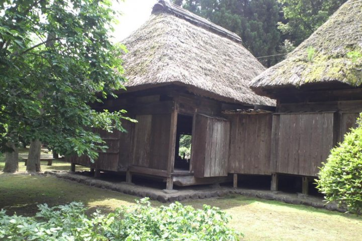 Jingu Shrine, Nature Museum