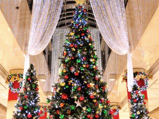 Giant Christmas Trees with draped curtains of soft lights