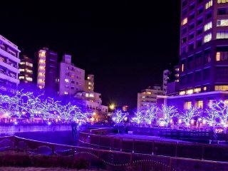 Having only recently started on November 23rd and running until December 25th 2014, this is one of Tokyo's newest winter illuminations