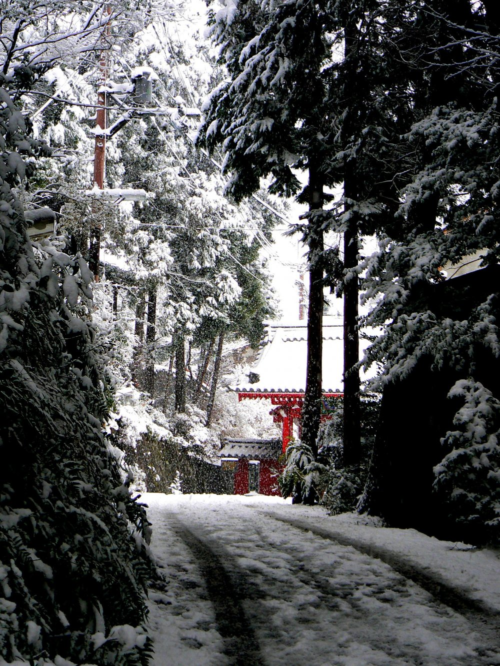 First glimpse of the red gate from the path