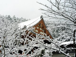 The gable of the temple rising above snow-covered branches