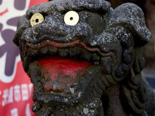 Luck 5 yen coins on the eyes of this guardian koma-inu statue