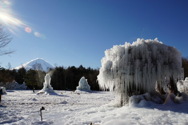 Amazing view of Mt. Fuji and this ice tree sculpture