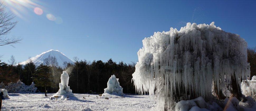 Фестиваль ледяных деревьев озера Саико