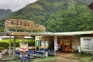 Jungle Onsen