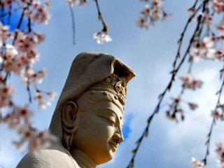 Construit en béton sur une armature de tiges d'acier, le visage de Kannon a été modélisé par le célèbre sculpteur, Choun Yamazaki.