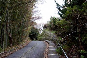 료칸 코모레비(木もれび)