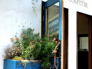Window boxes and pots were crammed with flowering plants