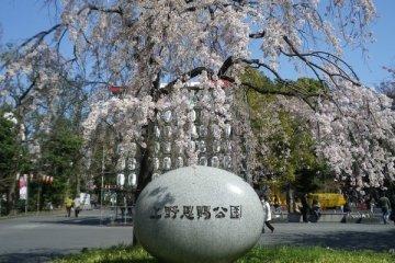 Ueno Onshi Koen
