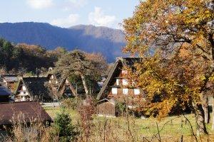 Thatched roof houses in Shirakawa-go