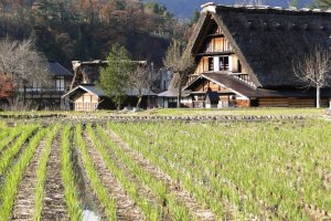 The Wada House in Shirakawa-go is open to the public