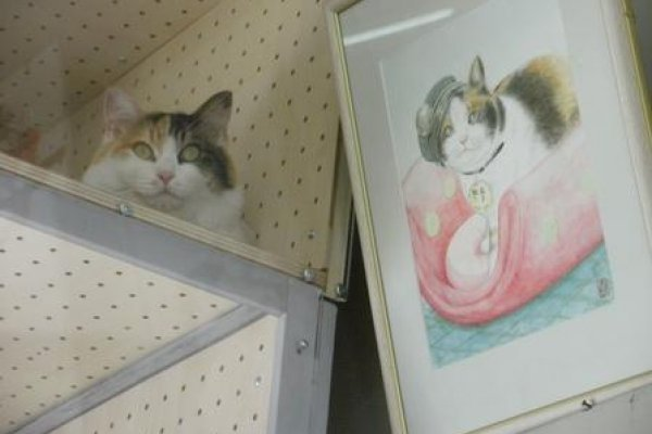 Nitama with portrait of Tama