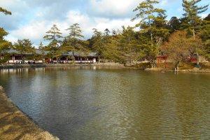 L'étang à droite du chemin menant à la salle du grand Bouddha