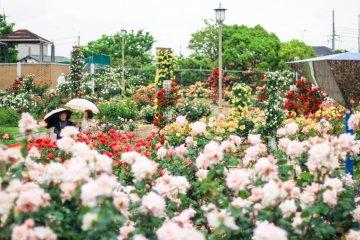 Le Parc Wakasono