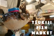 ตลาดปลา Tsukiiji  หนึ่งเดียวไม่มีใครเหมือน