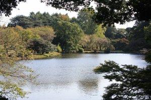 Vue sur un des étangs et début de couleurs d'automne