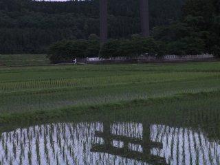 The torii gate at dusk