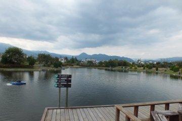 Fishing Park in Kaisei, Kanagawa