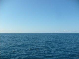 Bonjour la grande bleue