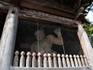 One of the Nio statues standing at the gate