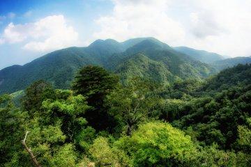 The fantastic Tottori trip - Day 2