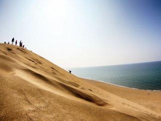 Cồn cát cao nhất 47m và dẫn ra biển