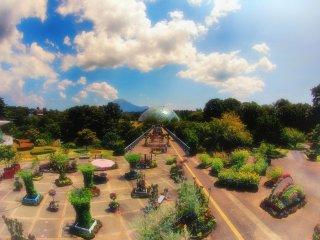 Taman bunganya terlihat ajaib, dengan gunung Daisen sebagai latar belakangnya