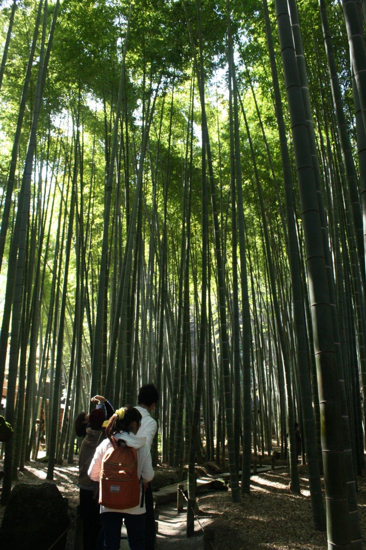 Suasana tidak seramai di Kyoto