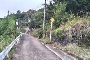 Lonely pilgrim road