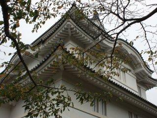 Le début de l'automne à Otaki